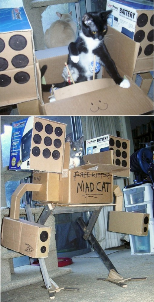 mechwarrior-kitty-is-ready-for-action