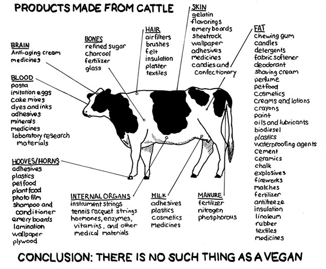 there-is-no-such-thing-as-a-vegan