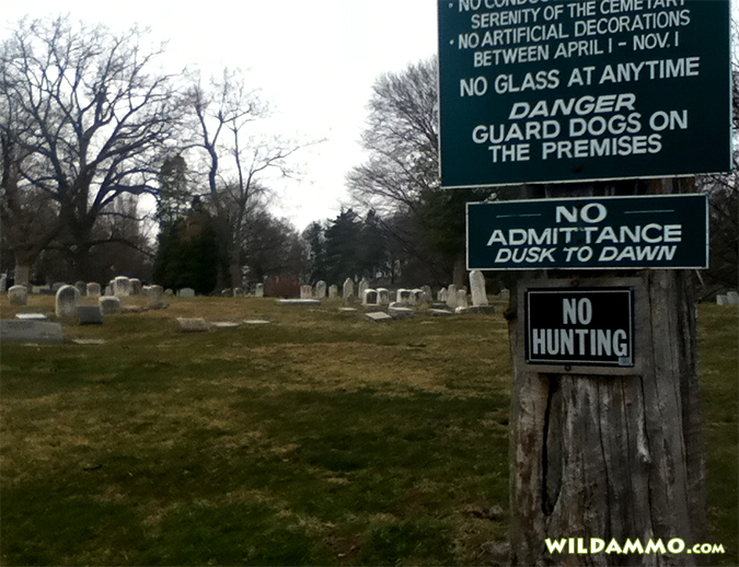 people-hunt-in-graveyards
