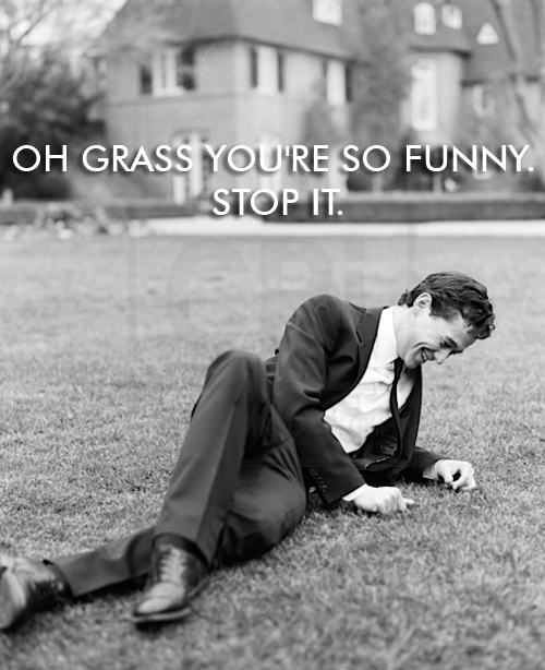 who-knew-grass-could-be-so-amusing