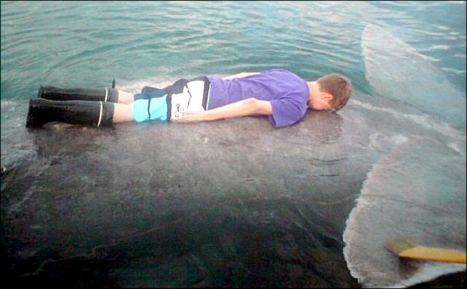 first-person-to-plank-a-whale